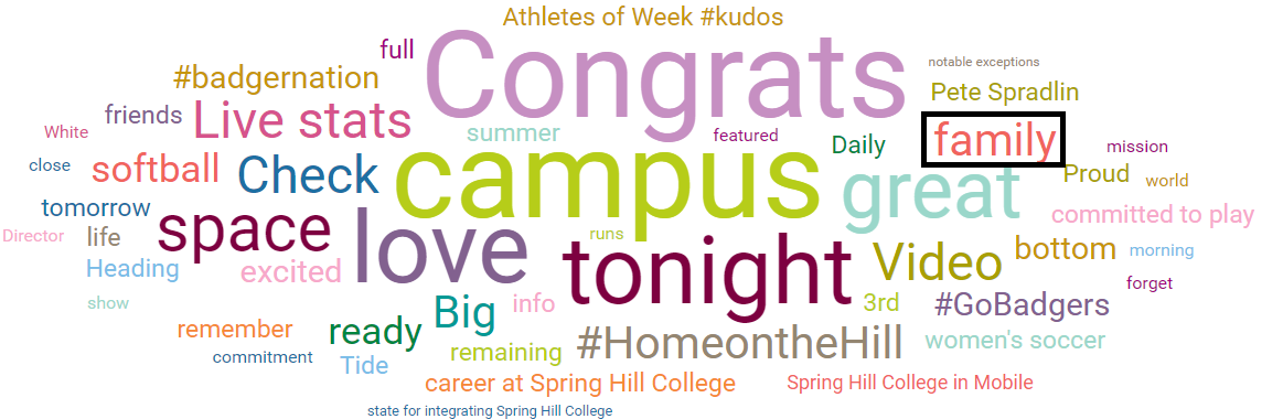 "Word cloud for Spring Hill College with ""family"" called out as a main topic"